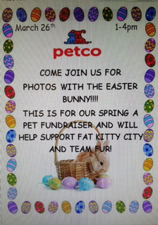 Easter Pictures Petco