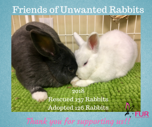 7648ed1d16c8a In 2018 Friends of Unwanted Rabbits rescued 137 rabbits adopted 126 rabbits  to forever loving indoor homes!! We couldn t do it without your help.