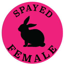 spayed femal sticker